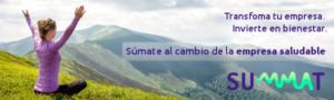 IBV presenta la plataforma en línea SUMMAT